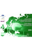 Annual Review of the European Football Players' Labour Market : 2009